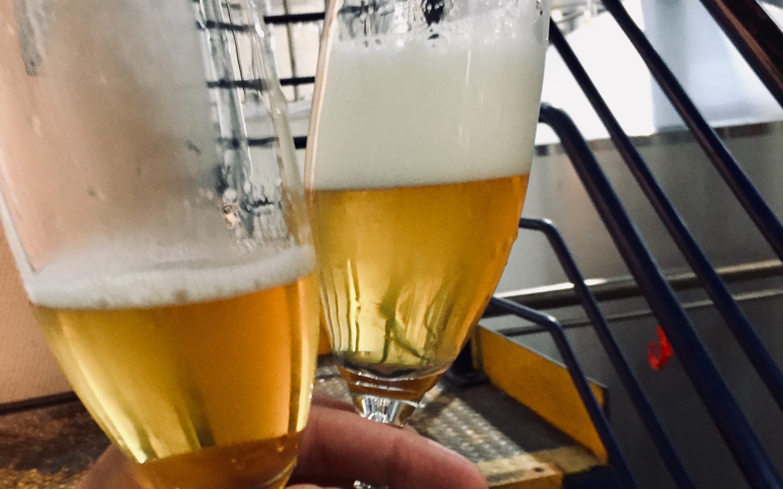 Professioneel gebrouwen bier