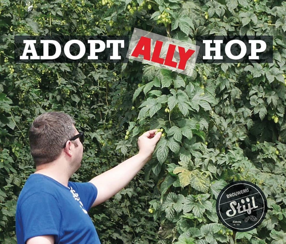 Ally hop adopteren van Brouwerij Stijl